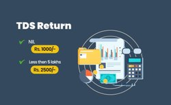 Online Taxation Consultant TDS RETURN FILLING, in Pan India