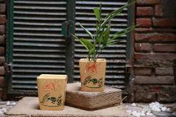 Square Ceramic Yellow Painted Planter