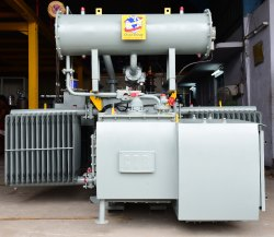 800kVA Three Phase Oil Cooled Distribution Transformer, Plinth Mounted