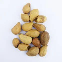 Gamhar Seeds -gmelina Arborea Seeds