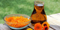 Calendula Oil (Infused)
