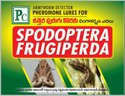PC Pheromone Lures for Spodoptera Frugiperda