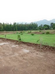 Plots - The Perfect Place To Live In Dehradun , Investment