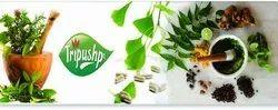 Herbal PCD Pharma Franchise In Gujarat