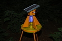 Solar Insect Light Trap