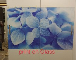 Glass U.V. Printing For Industrial & Commercial Interior