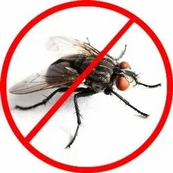 Industrial Fly Control Services