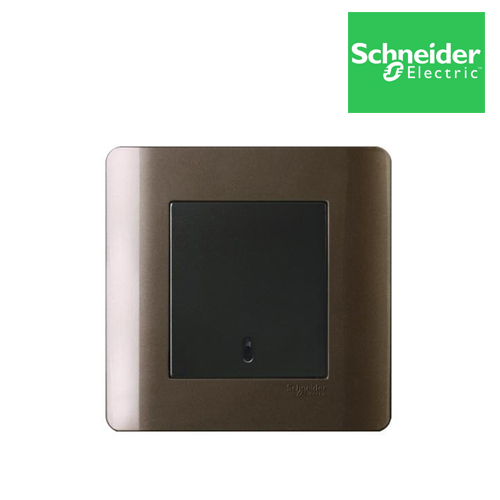 Brown Schneider Zencelo Switch