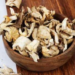 Dry Oyster Mushroom Supplier, 3.1 G/100g