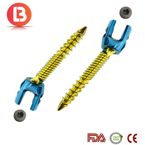 Dual Thread Polyaxial Screw