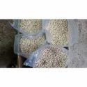 Pkm-1 Moringa Seeds
