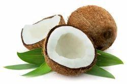 Coconut Fresh & Organic Medium