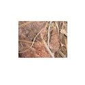 Metco Birch Non Ferrous Copper Scraps