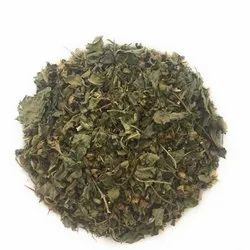 Ocimum Tenuiflorum Green Dried Tulsi Leaves, Packaging Size: 1 Kilogram, Packaging Type: Packet