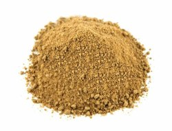 Amchur Powder