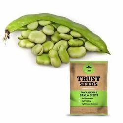 Trust Seeds Fava Beans Seeds