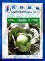 Sanas Agro Vishvadeep Cabbage Seeds, For Farming, Pack Size: 10 Gm