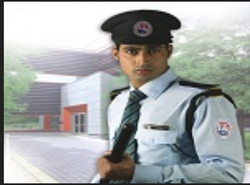 Security Consultants Services
