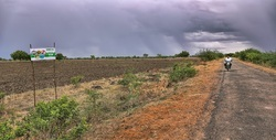 Cheap Agriculture Land , Size/ Area: 150 Acres, Rs 375000