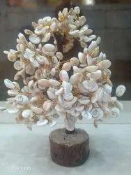 Gomtichakra Tree