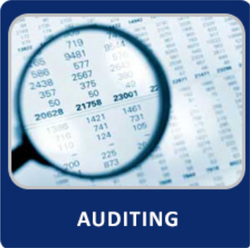 Audit Assurance Services