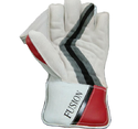 Aver Fusion Wicket Keeping Gloves