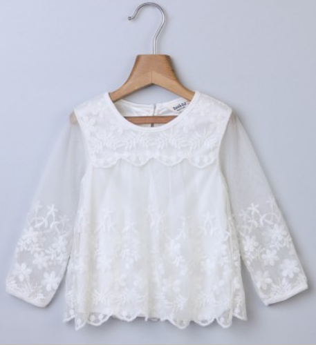 6ab9fe62c Girl Tops And T-Shirts - Embroidered Net White Top Ecommerce Shop ...