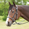 Bitless Leather Horse Bridle