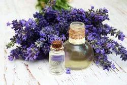 Lavender Kashmir Oil