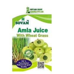 Organic Amla Wheatgrass Juice