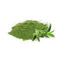 Aloe Vera Extract 10:1