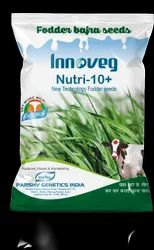 Nutri 10 Plus Fodder Bajra Seeds