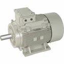 Heavy Duty Electric Motor