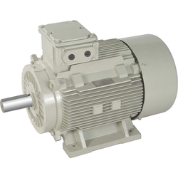 Heavy Duty Electric Motor