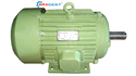 Commercial Electric Motor
