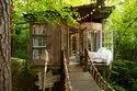 Tree House Cost Goa