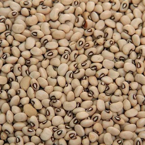 Gluten Free Lobia Seeds