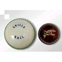Promotional Cricket Balls