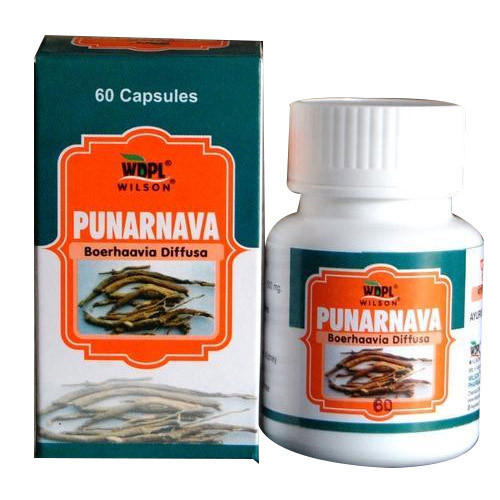 Wdpl Punarnava Boerhaavia Diffusa Capsule For Personal Packaging Type Bottle Rs 200 Bottle Id 19457138830