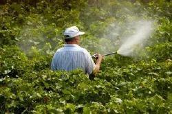 Pests Home Garden Pest Control