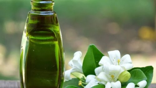 Bhringraj Herbal Extract (Water Soluble)