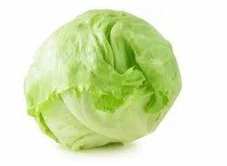 A Grade Lettuce Iceberg, Packaging Type: Carton, Packaging Size: 20 Kg