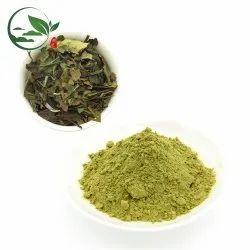 Leaf Tea Extract