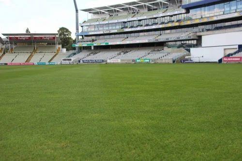 Cricket Ground Flooring Service