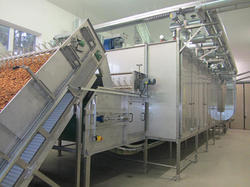 Dehydrated Vegetable Processing Plant