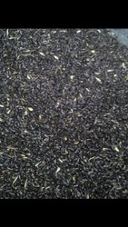 black diamond grass seeds