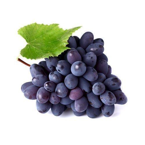 purple grapes at rs 80 kilogram hadapsar pune id 16445565830
