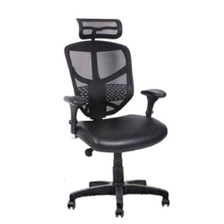 XLE-2009 Net Back Chair