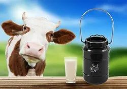 Stainless Steel Gallon Milk Can Heavy-Gauge Silicone Seal Dent Resistant Perfect for Boiling Milk