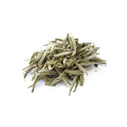 White Tea Extract